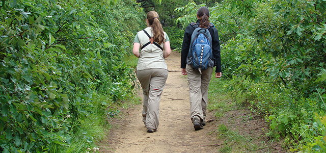 Two hikers in the Albany Pine Bush Preserve
