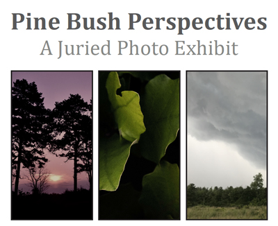 Pine Bush Perspectives: A Juried Photo Exhibit heading followed by a series of photographs from past shows. The first photograph is of two pitch pine