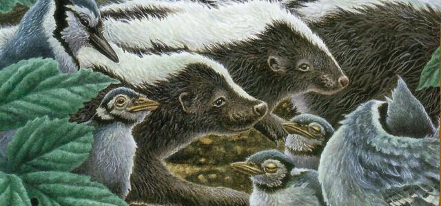 illustration of skunks and birds