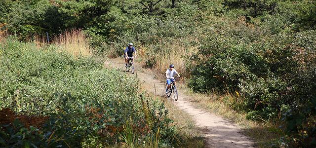 people mountain biking in the Albany Pine Bush Preserve