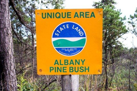 NYS Unique Area Sign