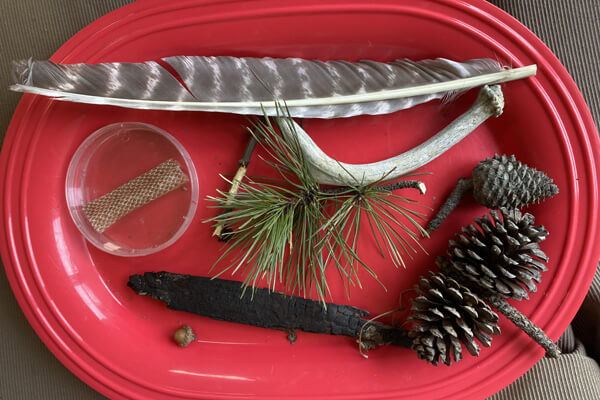 red tray with feather, antler, pine cones, charred wood, pine needles, acorn and snake skin