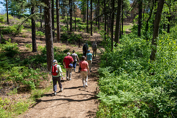 People hiking a trail in the Albany Pine Bush Preserve