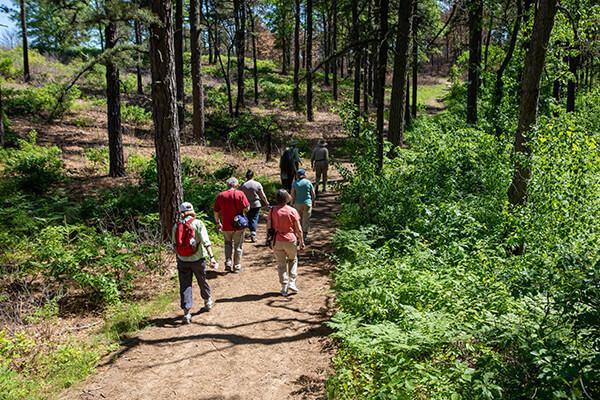 Adults hiking down trail