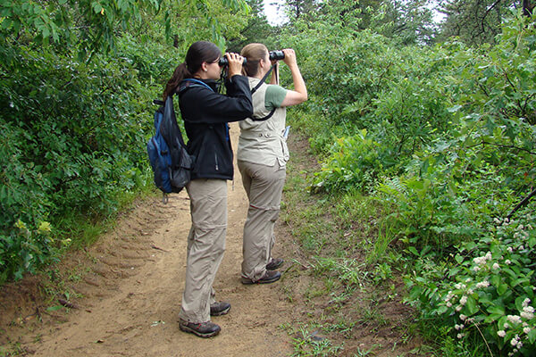 two people looking through binoculars on a trail