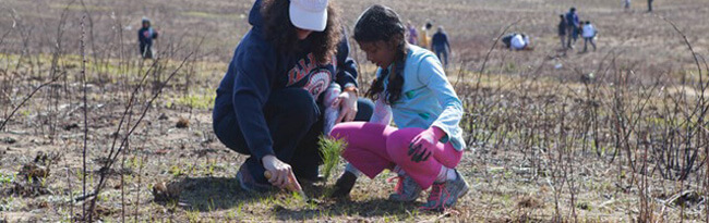 A young girl and an adult woman plant a pitch pine tree in the preserve on Earth Day.
