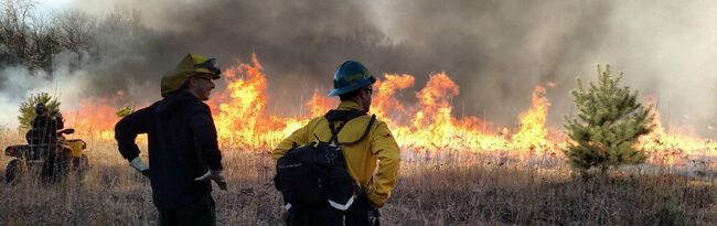 Two firefighters look on as a prescribed fire burns in the background