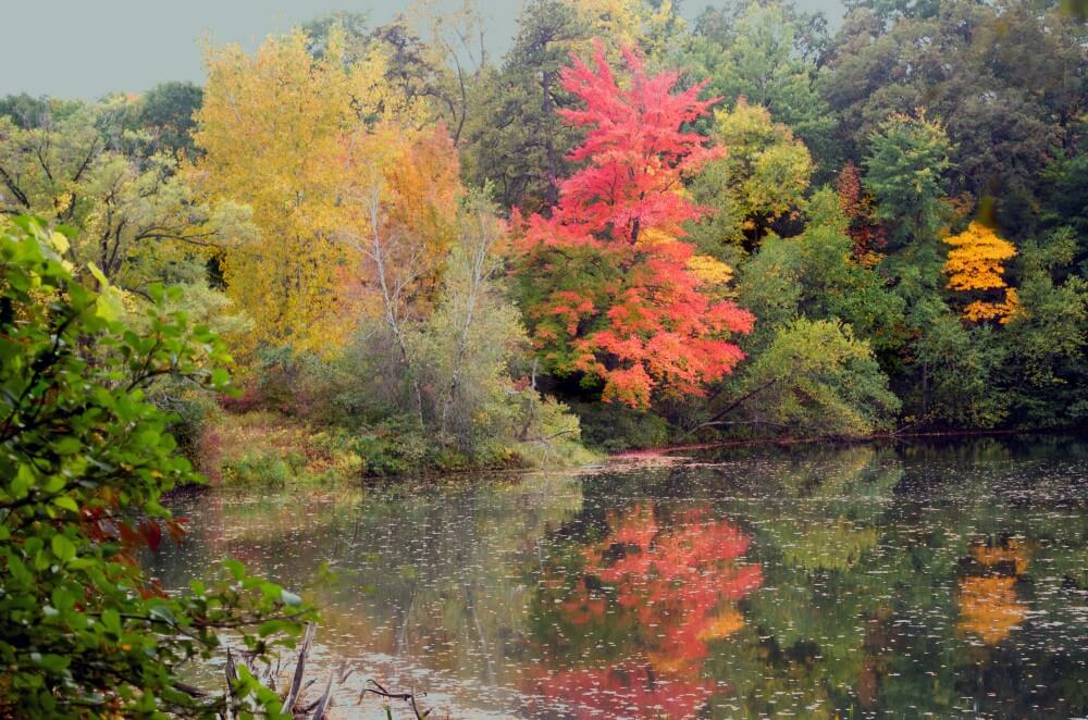 Rensselaer Lake in autumn