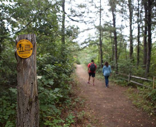 Pine Bush Trail