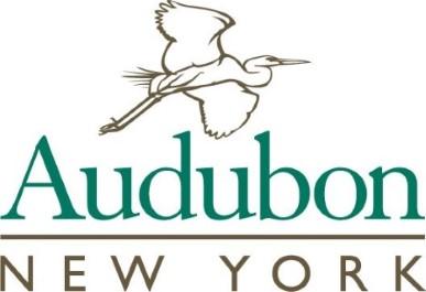 Important Bird Area logo