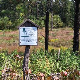 An Albany Pine Bush Preserve boundary sign