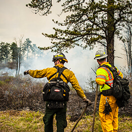 A prescribed fire being conducted by two crew members.